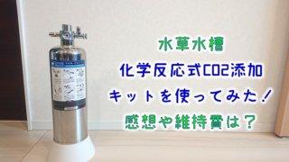 【水草水槽】化学反応式CO2添加キットを使ってみた!感想や維持費は?